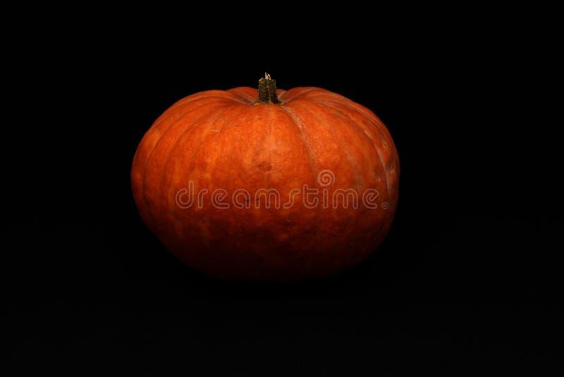 Abóbora de Halloween no fundo escuro imagem de stock royalty free