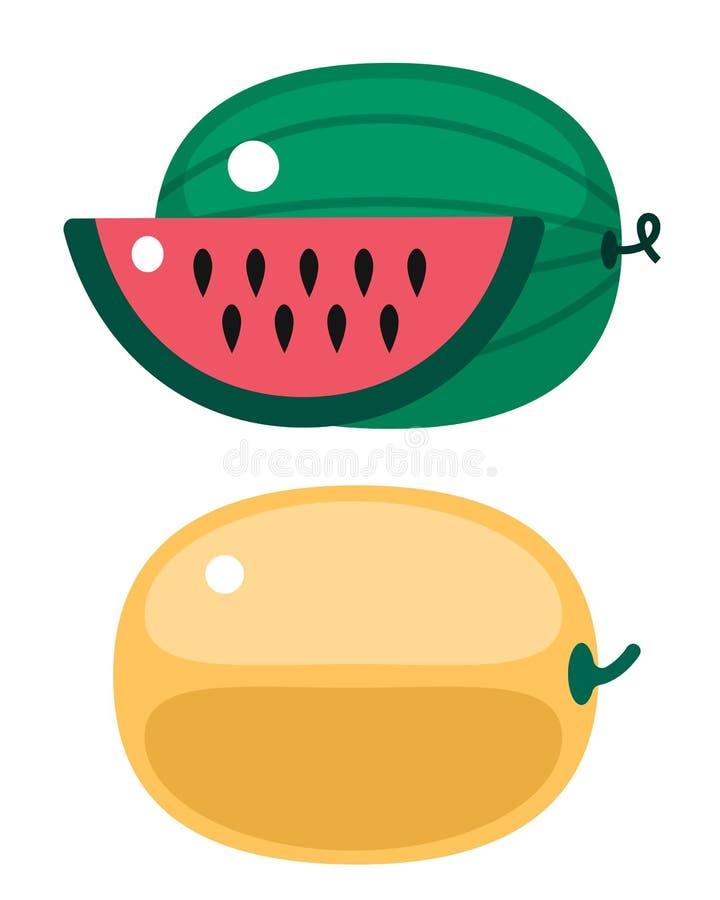 A abóbora e a melancia alaranjadas frescas isolaram a ilustração do vetor ilustração do vetor