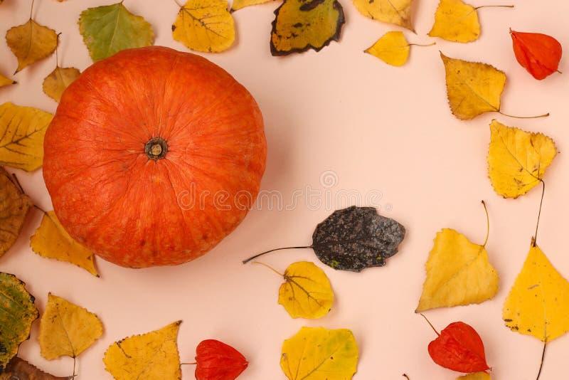Abóbora em um fundo com folhas de outono, vista superior foto de stock