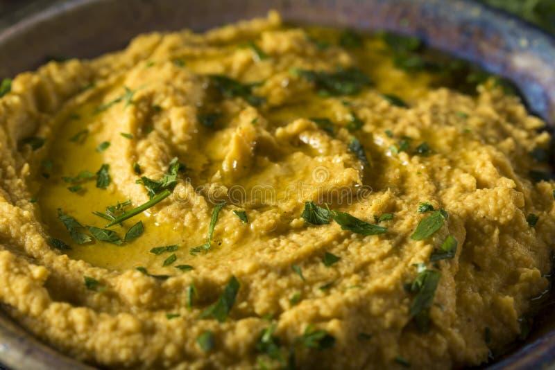 Abóbora grega caseiro Hummus imagens de stock royalty free