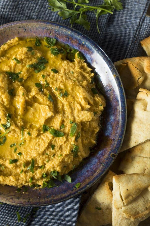 Abóbora grega caseiro Hummus imagem de stock