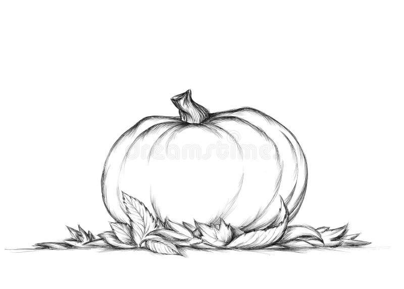 Abóbora simples nas folhas de outono ilustração royalty free
