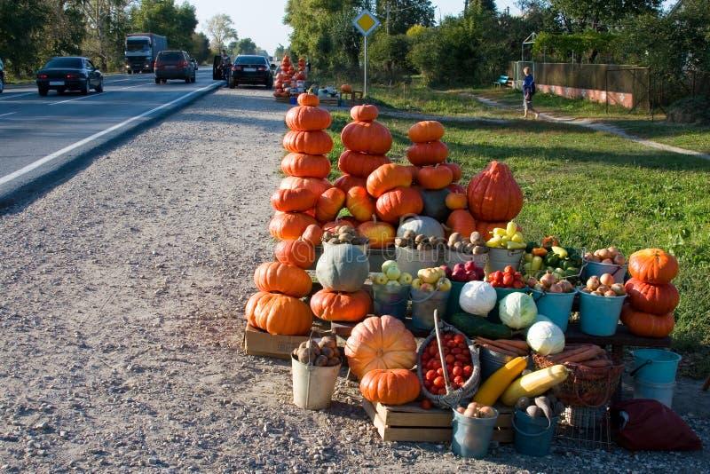 Abóboras alaranjadas e outros vegetais para a venda foto de stock