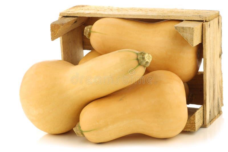 Abóboras dadas forma frasco do butternut fotografia de stock royalty free
