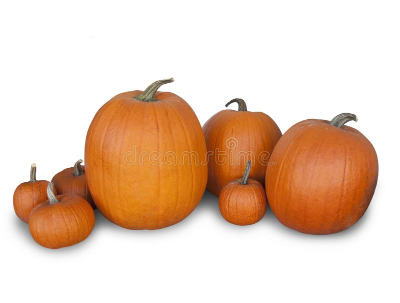 Abóboras de Halloween isoladas no fundo branco fotografia de stock royalty free
