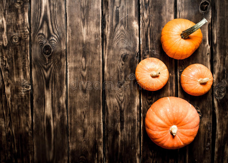 Abóboras maduras da colheita A do outono foto de stock