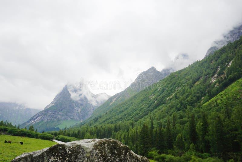 Aba prefectuur in de provincie van Sichuan, vier meisjesberg royalty-vrije stock foto