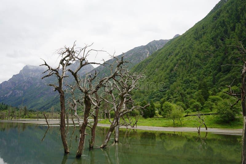 Aba prefectuur in de provincie van Sichuan, vier meisjesberg stock foto