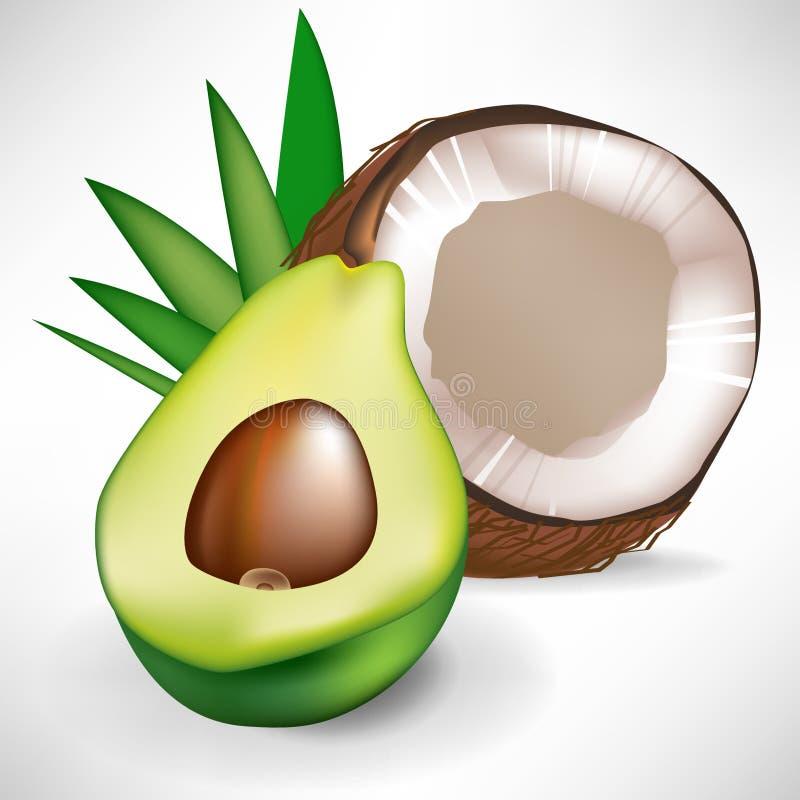 Abacate e coco quebrado ilustração stock