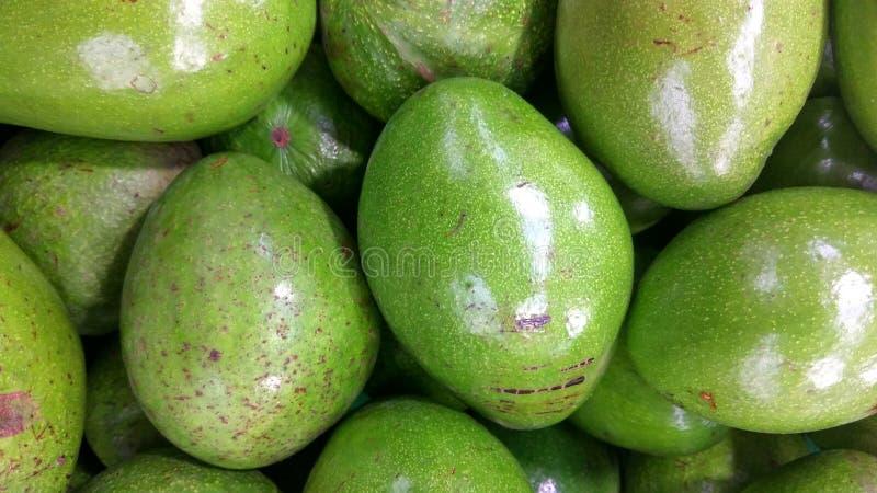 Abacate verde-descascado fresco imagens de stock