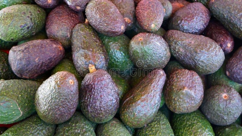 Abacates frescos orgânicos imagem de stock