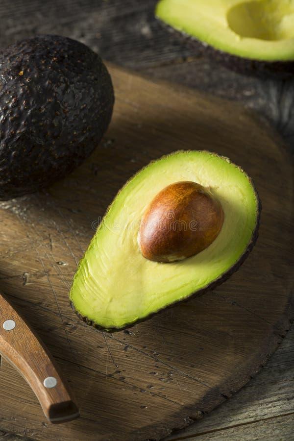 Abacates maduros orgânicos crus imagem de stock