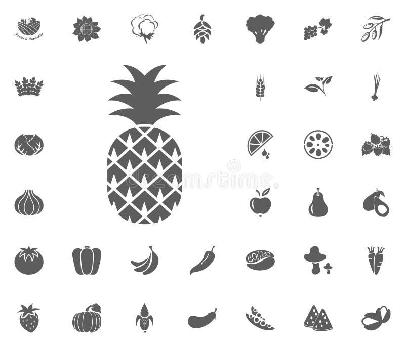 Abacaxi, ícone do ananás Grupo do ícone da ilustração do vetor das frutas e legumes símbolos do alimento e da planta imagem de stock