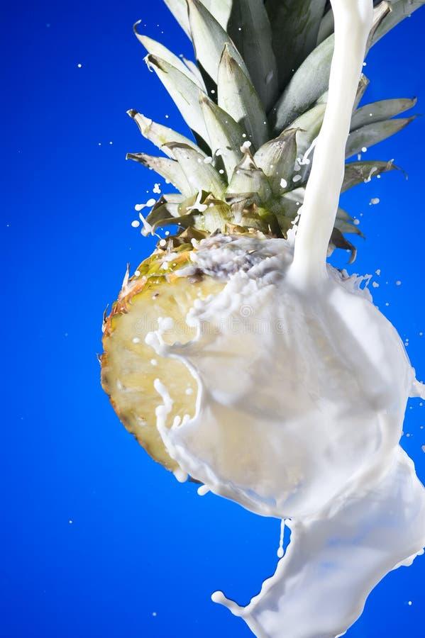 Abacaxi com leite imagem de stock