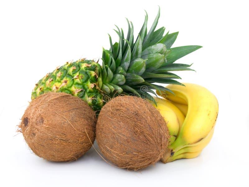 Abacaxi maduro, grupo das bananas e coco fotografia de stock royalty free