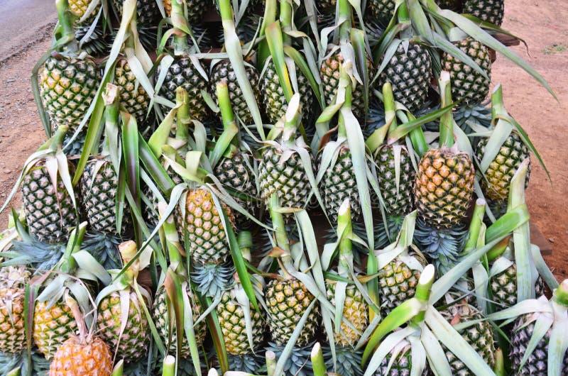Abacaxi na loja ou no greengrocery do fruto na rua para a venda fotografia de stock