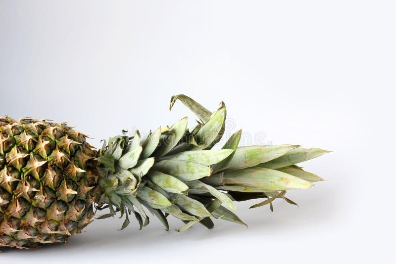 Abacaxi sobre fundo branco Frutos em fundo branco imagem de stock royalty free