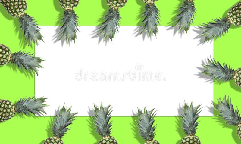 Abacaxis frescos no fundo verde-claro Orientação horizontal foto de stock royalty free