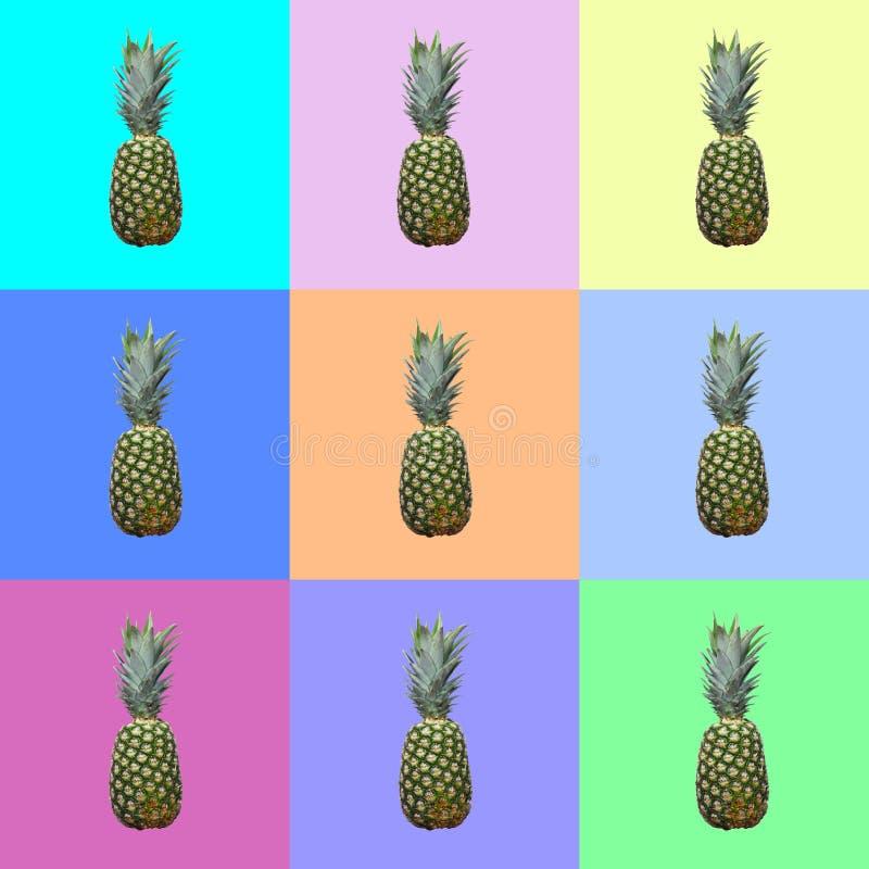 Abacaxis no fundo multicolour Conceito do alimento fotografia de stock