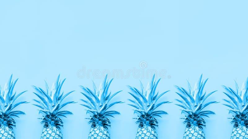 Abacaxis tonificados na gota contínua azul imagem de stock royalty free