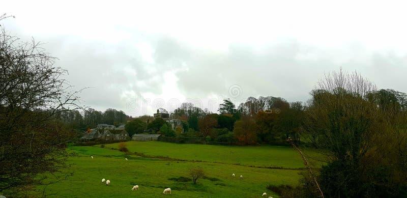 Abadía de Buckland Devon , uk imagen de archivo