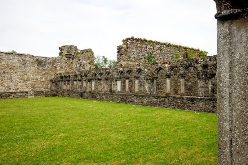 Abadia de Jerpoint perto de Thomastown, condado Kilkenny, Irlanda imagens de stock royalty free