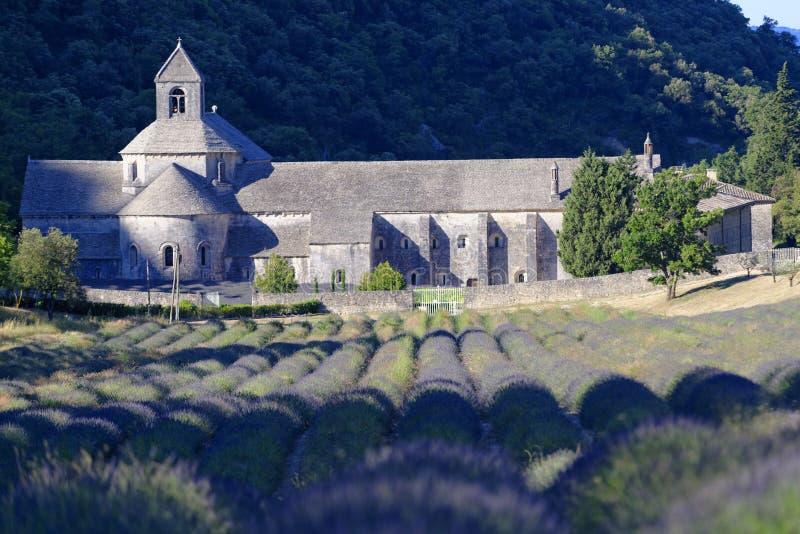 Abadia de Senanque imagens de stock royalty free