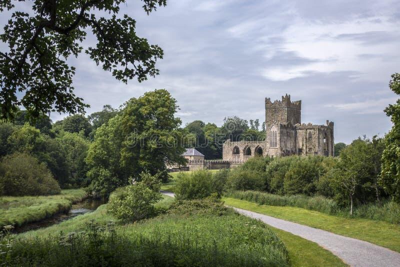 Abadia de Tintern - condado Wexford - Irlanda imagem de stock royalty free