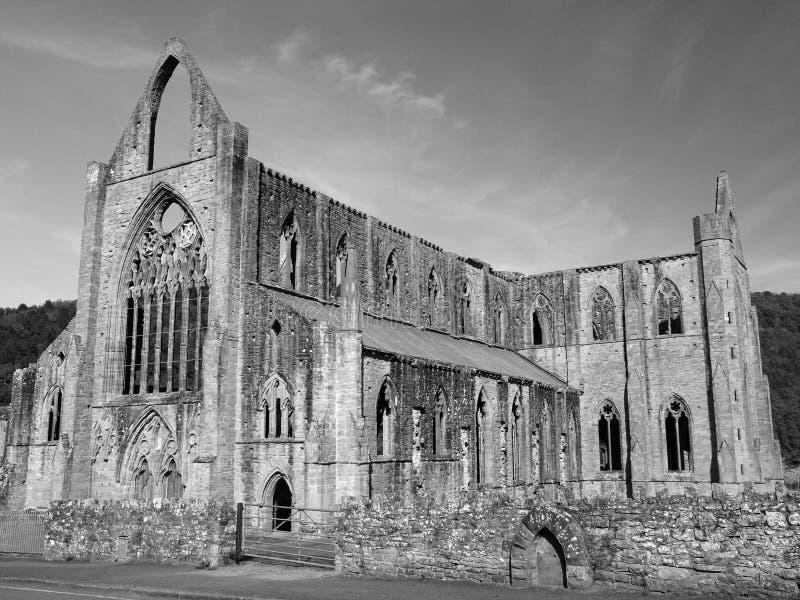 Abadia de Tintern, Wales imagem de stock royalty free