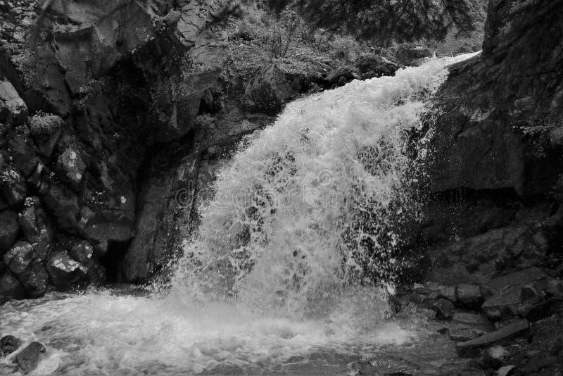 Abaissez Reid Falls dans Skagway, Alaska en noir et blanc photo stock