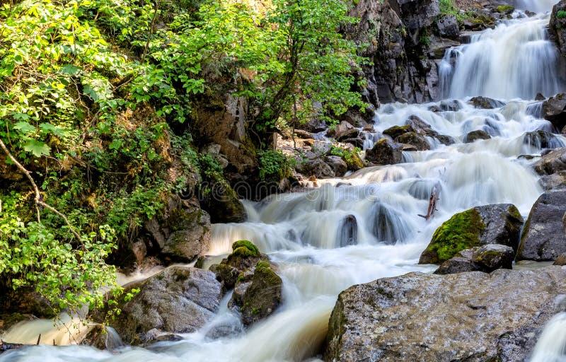Abaissez Reid Falls dans Skagway, Alaska, Etats-Unis Longue exposition image libre de droits