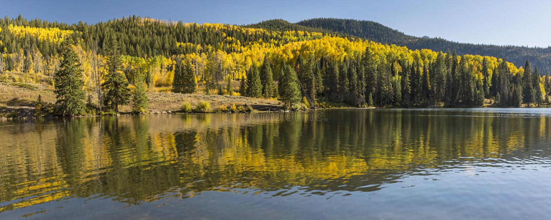 Abaixe o lago Autumn Panorama Catacract fotos de stock royalty free
