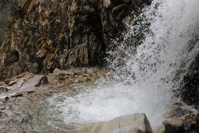 Abaixe Reid Falls em Skagway, Alaska fotografia de stock