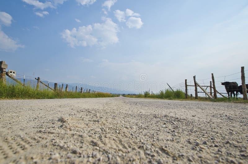Abajo en el corte suave del camino de tierra a través de las tierras de labrantío fotos de archivo
