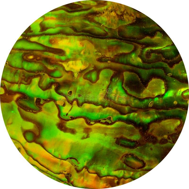 Abalone Cirkel stock afbeeldingen