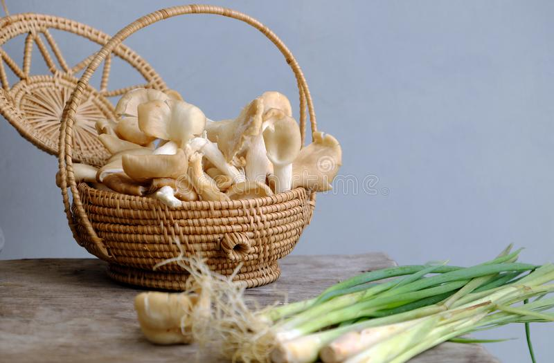 Abalone mushroom, citronella plant, Vietnamese vegan food ingredient. Basket abalone mushroom and citronella plant on wooden background, this vegetables is royalty free stock photos