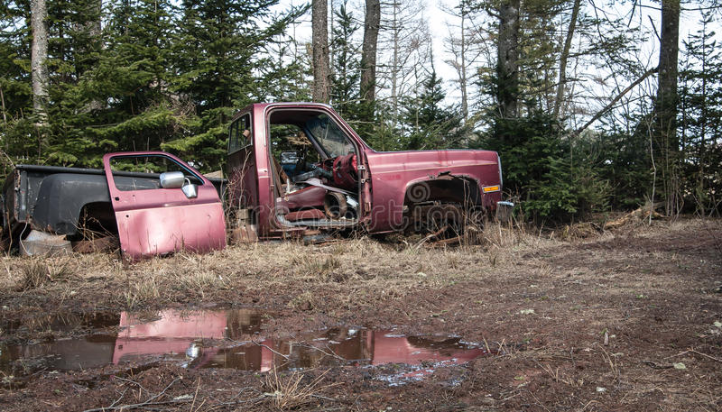 Abandon truck. Old purple abandon truck in a forest stock photos