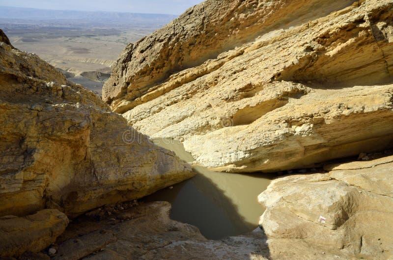 Abandone el lecho de un río seco en Negev en la primavera, Israel. imagen de archivo libre de regalías