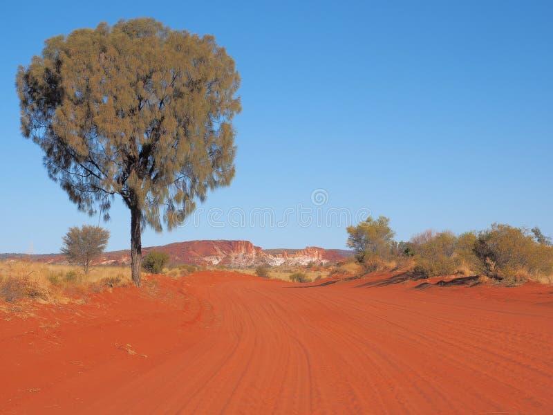 Abandone o vale arenoso vermelho alinhado carvalho da trilha e do arco-íris fotografia de stock