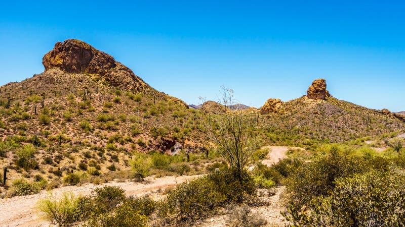 Abandone a paisagem e montanhas ásperas na floresta nacional de Tonto no Arizona, EUA foto de stock