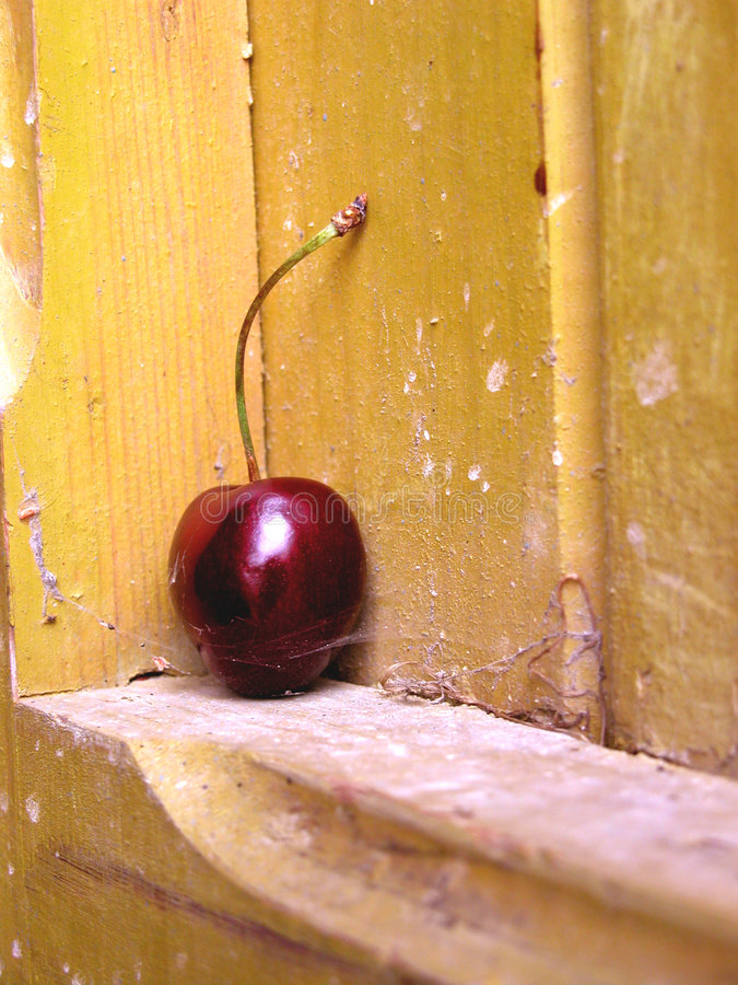 Download Abandoned stock image. Image of alone, dust, fruit, dark - 30367