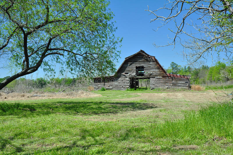 Abandoned Barn in field. Old abandoned barn in field with trees in foreground and blue skies above stock image