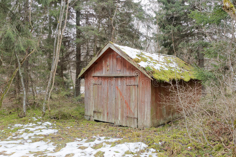 Abandoned barn hidden in the woods stock photography
