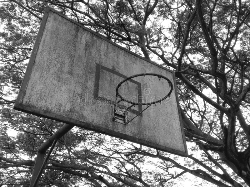 Abandoned basketball board. With trees around and near a forest stock image