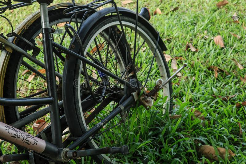 Abandoned bike on the lawn royalty free stock image