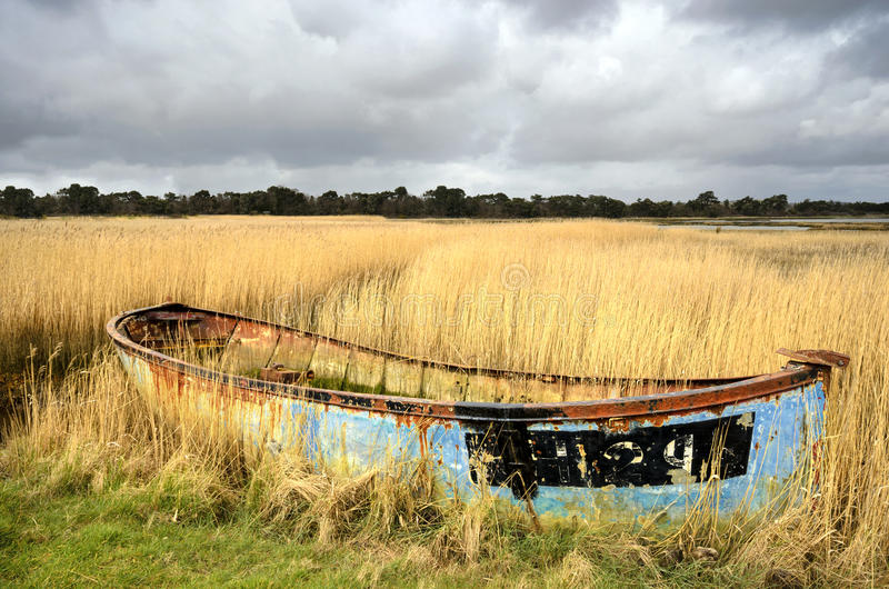 Abandoned Boat in Reeds. Rusty old shipwrecked and bandoned boat in reeds on salt marshes in Poole Harbour, Dorset royalty free stock photo