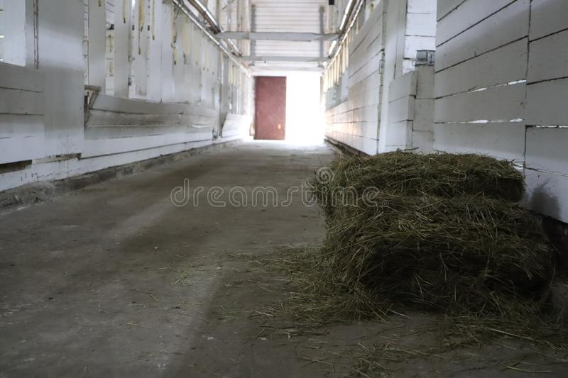 Abandoned building. farm shelter in the barn with haystacks.  Inside a Barn for Farm Animals like Cows or Horses. Interior of Old. Abandoned empty barn royalty free stock photo