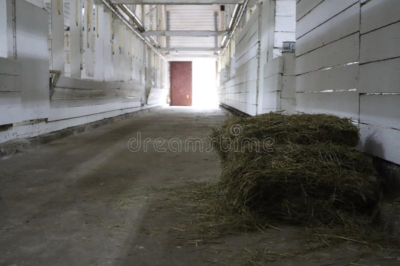 Abandoned building. farm shelter in the barn with haystacks.  Inside a Barn for Farm Animals like Cows or Horses. Interior of Old. Abandoned empty barn royalty free stock photography