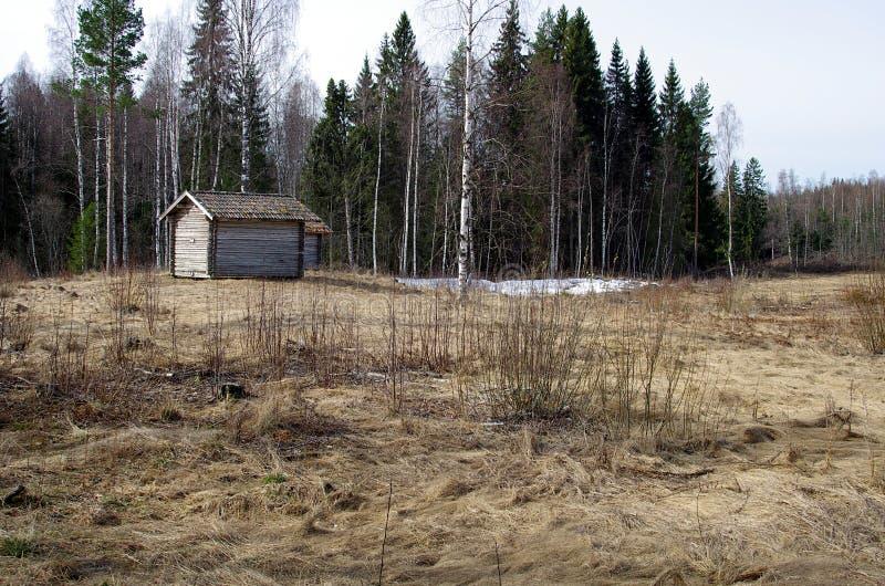 Swedish abandoned farm stock photo  Image of building - 39151984