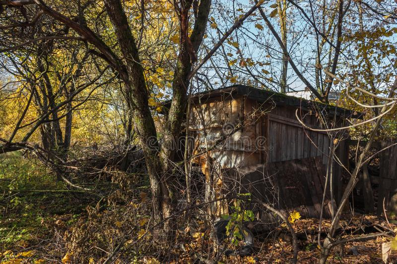 Abandoned buildings in golden autumn stock photos